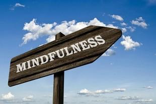 Présentation Programme Mindfulness