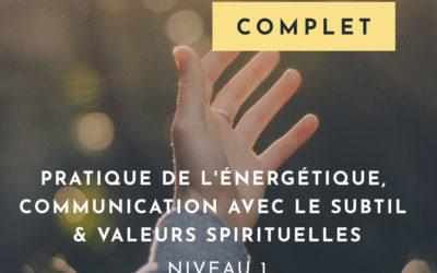 Pratique de l'énergétique, communication avec le subtil & valeurs spirituelles. Niveau 1